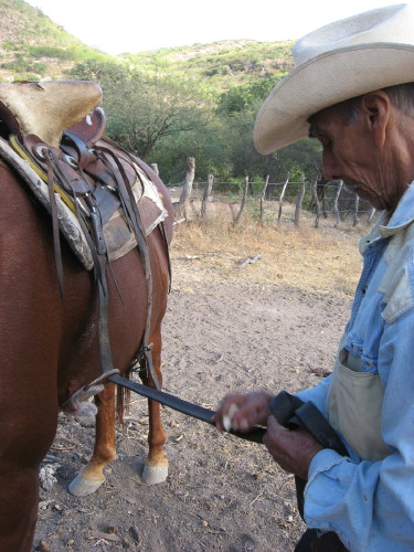 A Vaquero's work is never done. Cruz prepares to ride out.